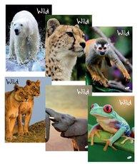 sešit 544 linka Vild - divoká příroda