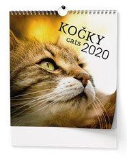 Nástěnný kalendář - Kočky